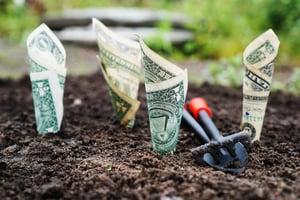 bank-notes-blur-close-up-164474