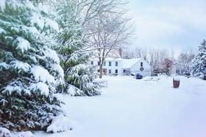 christmas-christmas-house-cold-fir-259583