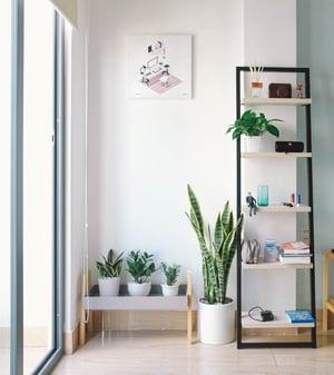 rectangular-white-and-black-wooden-display-rack-beside-green-2826787
