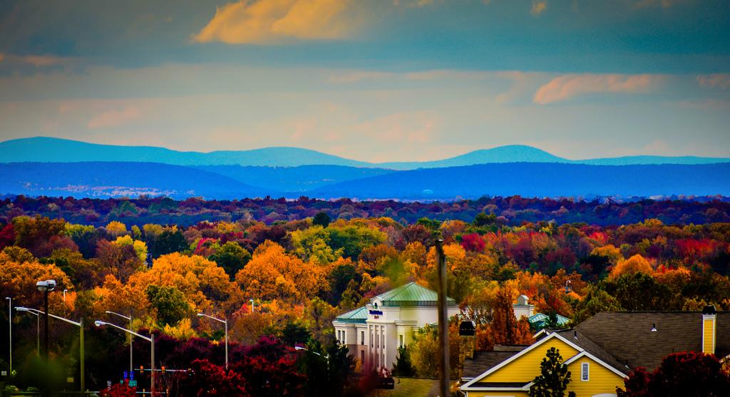 Centreville, VA: A Historic Community