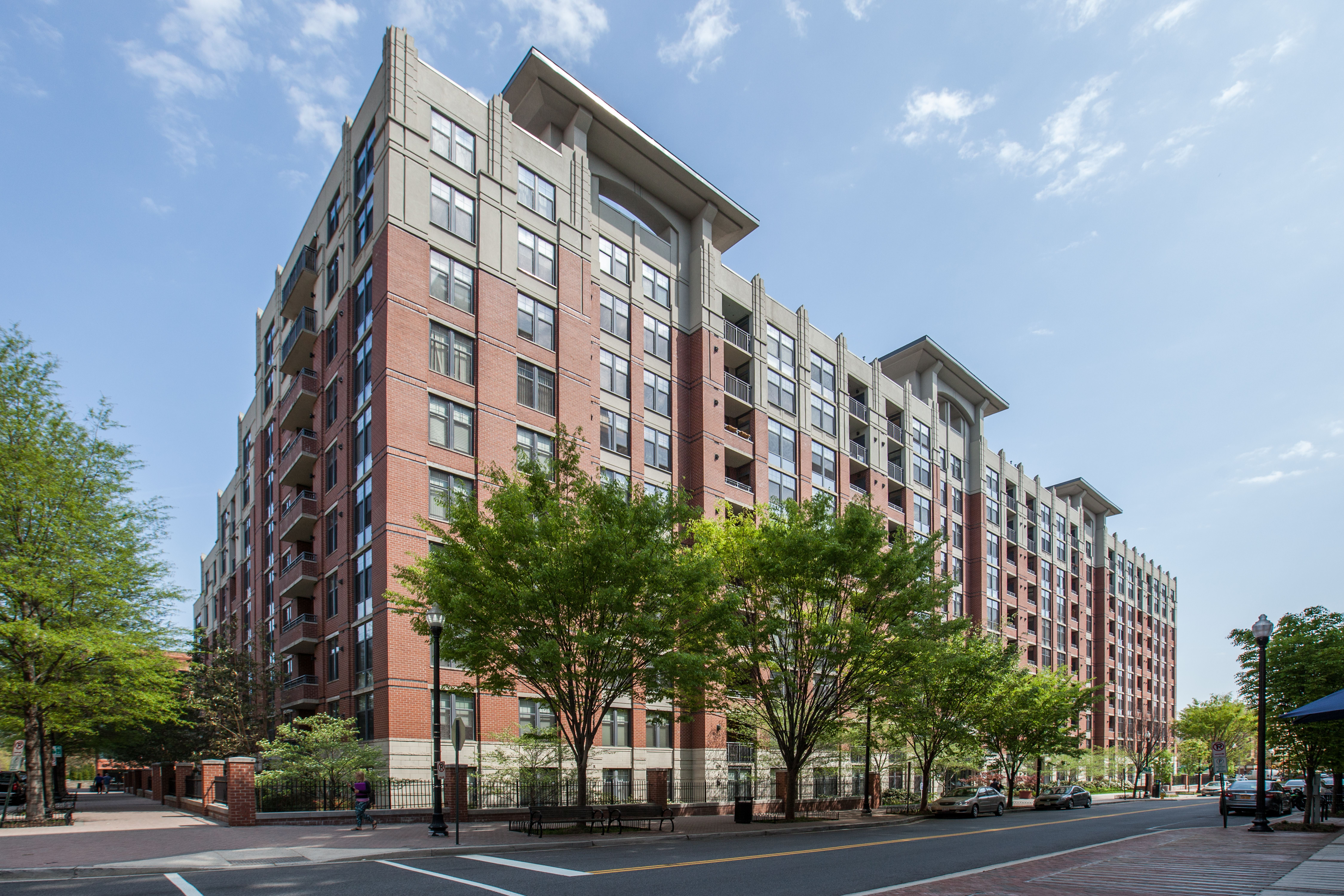NEW LISTING: Bright, Spacious 1 BDR in Arlington