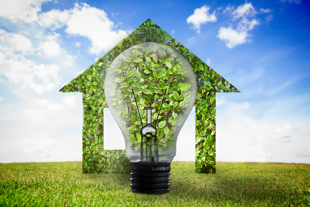 Tips for Greening Your Home and Making a Real Difference