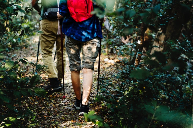 Best Spring Hikes & Walks in Fairfax County, VA